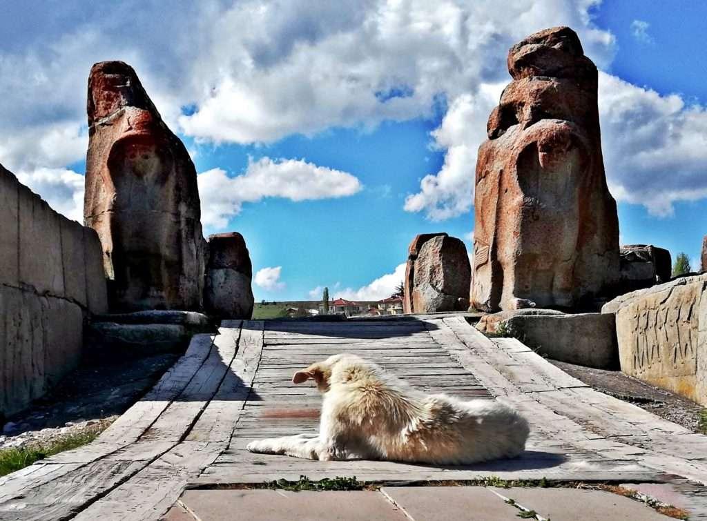 Soldan Sağa Güney ve Kuzey Sfenks Blokları Alacahöyük Antik Kenti