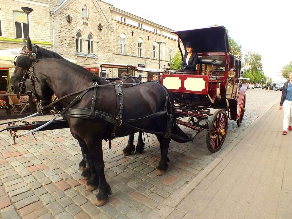Tallinn'de Bir At Arabası