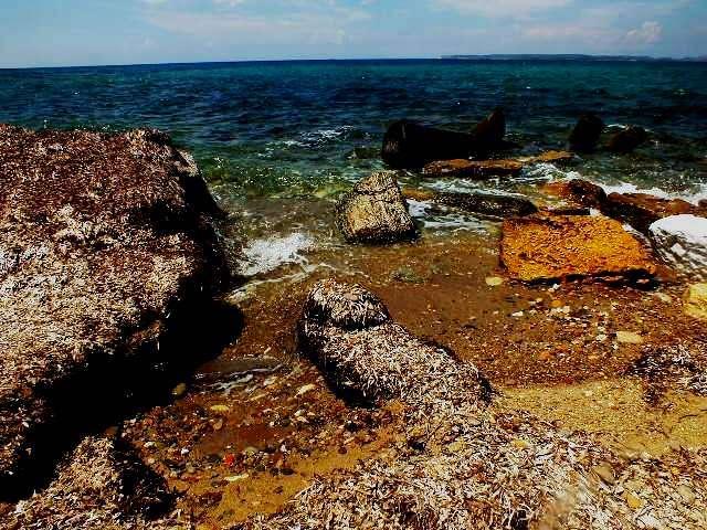 Alexandria Troas Antik Kenti Dış Liman