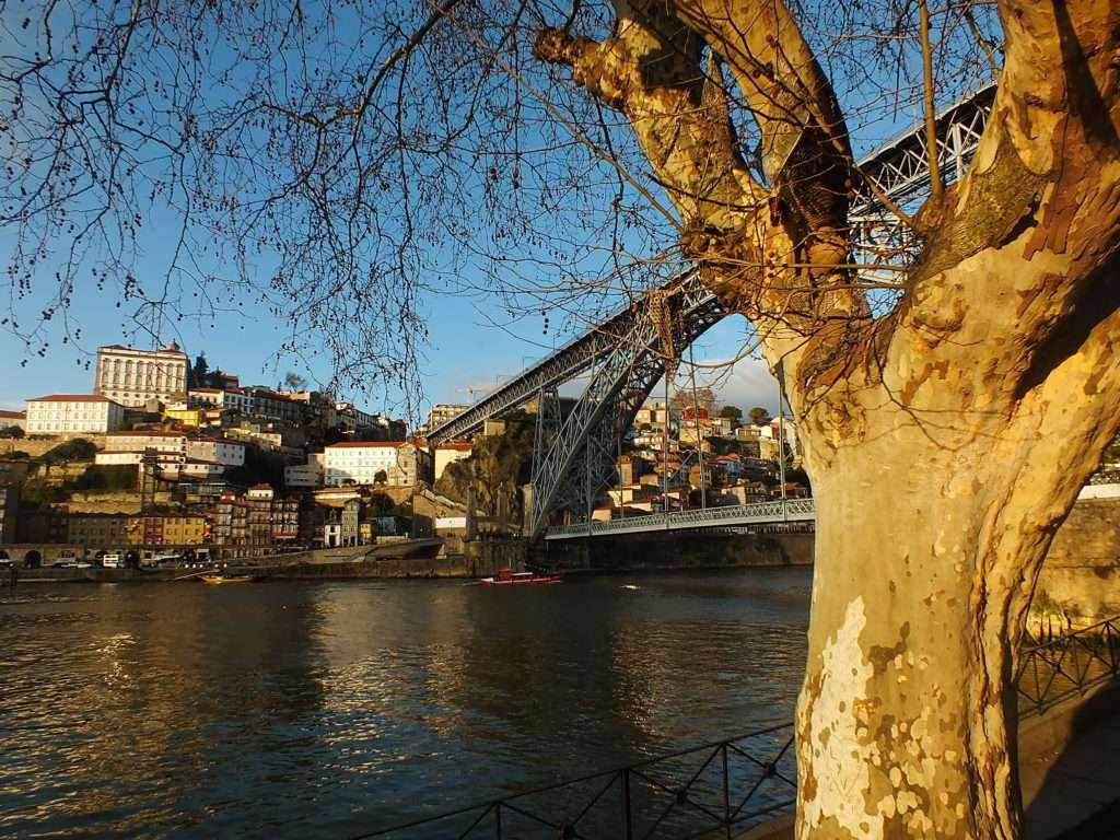 Rabelo Tekne Turu (6 Köprü Turu)