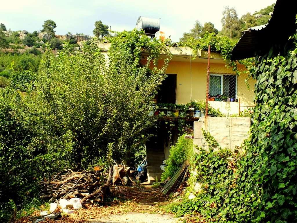 Çamlıca (Yukarı Köy)