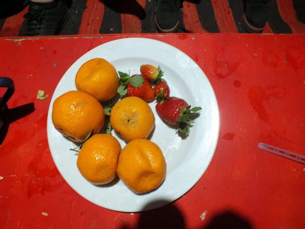 Meyve Servisi
