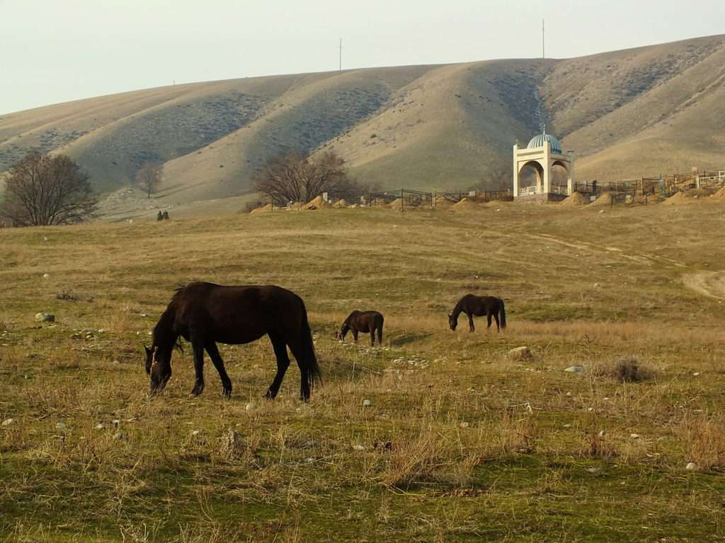 Kırgız Mezar Kültürü