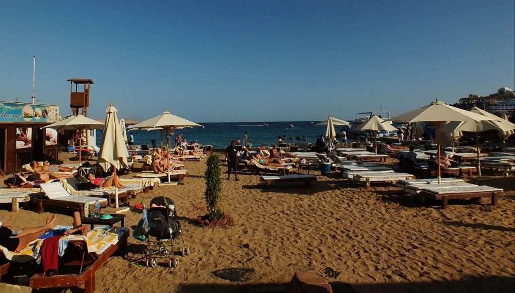 Viva Beach