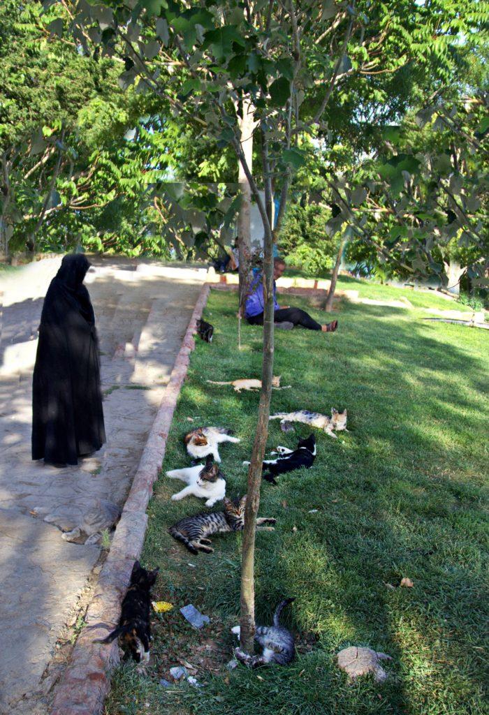 Şairler Mezarlığı Bahçesi-Tebriz