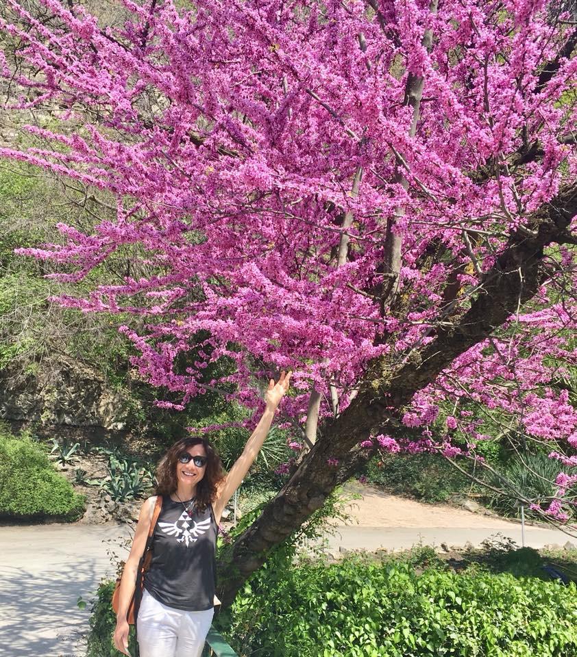 Tiflis Botanik Bahçesi