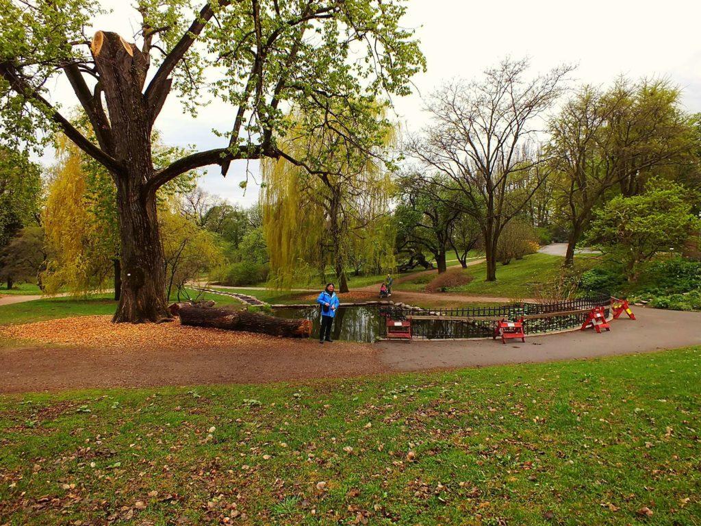 Oslo Botanik Bahçesi (Oslo Botaniske Hage)