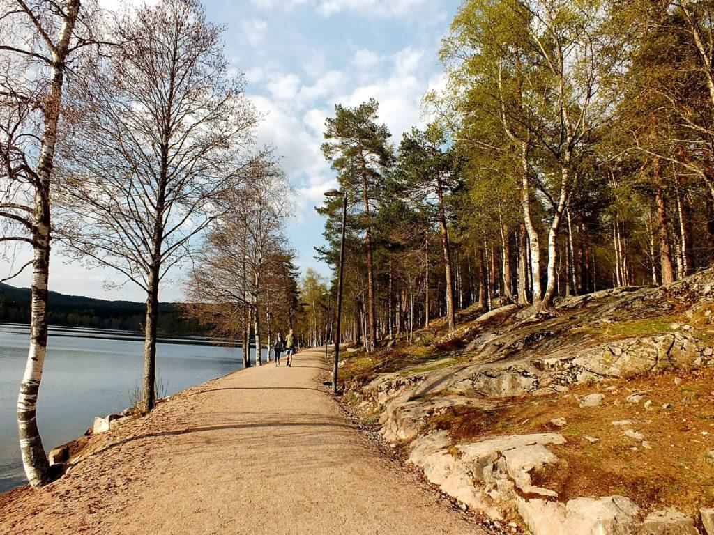 Sognsvann Gölü Çevresinde Yürüyen İnsanlar
