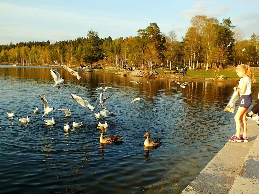 Sognsvann Gölü ve Çocuklar