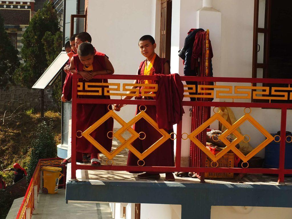 Shree Mangal Dvip Branş Okulu