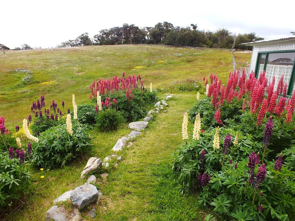 Bir Estancia Bahçesi