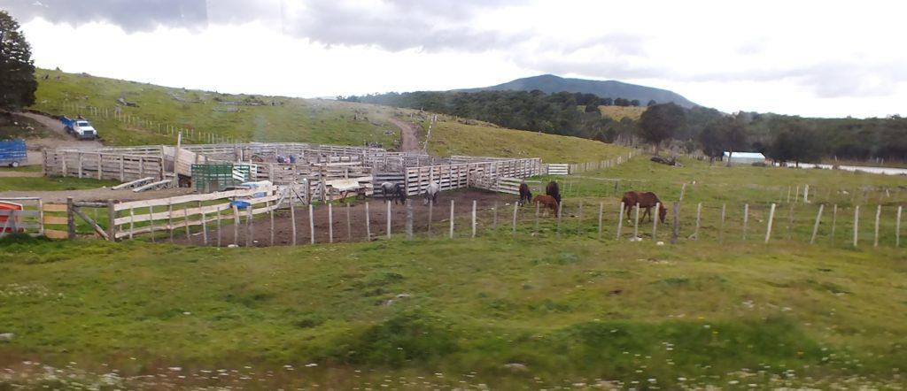 Patagonya'da Bir Estancia
