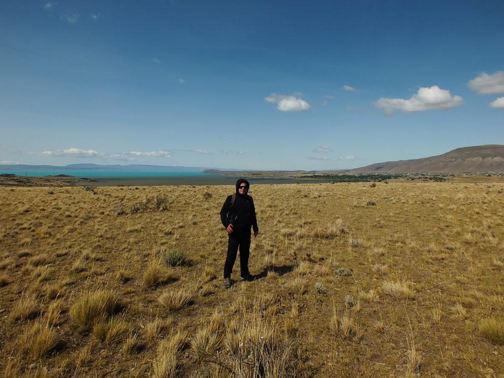 Patagonya Stepleri